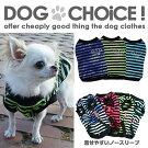 【ASONPET】キラキラクラウンロゴのボーダーTシャツ【犬服】【ペット服】【ドッグウェア】【激安】【お買い得】