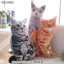 【リアル猫にそっくりなもちもちビッグサイズ抱き枕/猫クッション】ビッグサイズ抱き枕/ビッグクッション/クッション/…