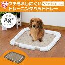 トイレトレーニング ペットトレー 幅63.5cm FTT-635 送料無料 犬 犬用 ペット ペット用 スノコ付き フチもれ防止 トイ…