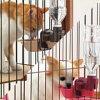 [宠物飞翔距离]供RICHELL宠物使用的水盘子S棕色(BR)、粉红(P)[狗、猫、盒·飞翔距离、盘子、水杯、供水、塑料瓶]Pet馆宠物馆乐天