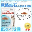 ロイヤルカナン 猫 FHN ウェット ユリナリーケア 85g×12個セット 健康な尿を維持したい成猫用 尿路結石 キャットフード ウェットフード パウチ プレミアム 成猫 アダルト[900357900