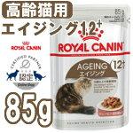 https://image.rakuten.co.jp/dog-kan/cabinet/white1/9217333.jpg