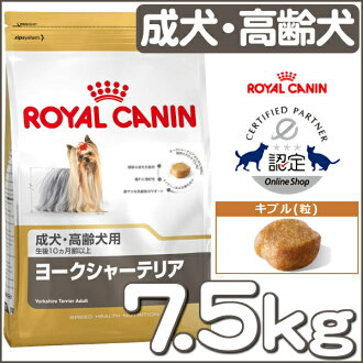 Dog Kan Royal Canin Yorkshire Terrier Dogs Senior Dogs For 75 Kg