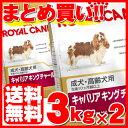 【最大350円OFFクーポン配布中】ロイヤルカナン キャバリア キングチャールズ 成犬・高齢犬用 3kg×2個セット送料無料…