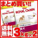 ロイヤルカナン 柴犬 子犬用 3kg×2個セット正規品 BHN 犬 ドッグ フード ドライ パピー 仔犬 小犬 幼犬 まとめ買 Pet…
