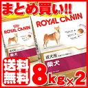 [350円OFFクーポン対象] ロイヤルカナン 柴犬 成犬 8kg×2個セット送料無料 正規品 犬 BHN ドッグ フード ドライ アダ…