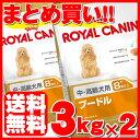 ロイヤルカナン プードル 8+ 中・高齢犬用 3kg×2個セット送料無料 正規品 犬 ドッグ BHN フード ドライ シニア 老犬 …