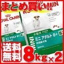 ロイヤルカナン ミニ アダルト 8+ 中高齢犬用 8kg×2個セット送料無料 正規品 犬 SHN ドッグ フード ドライ シニア 老…