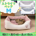 肉球マークのストライプ角型ペットベッドMペット ベッド 猫 犬 小型犬 通年 あったか スクエア PB-T007RD PB-T007BR P…