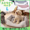 【最大350円OFFクーポン有】 【あす楽対象】 肉球マークのストライプ角型ペットベッドLペット ベッド 猫 犬 小型 中型…