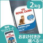 https://image.rakuten.co.jp/dog-kan/cabinet/white1/9214419.jpg