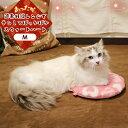≪20日限定ポイントUP!≫ 【あす楽対象】 ペット クッション 犬 猫 冬 遠赤外線レンジでチンしてぽっかぽか スウィ…