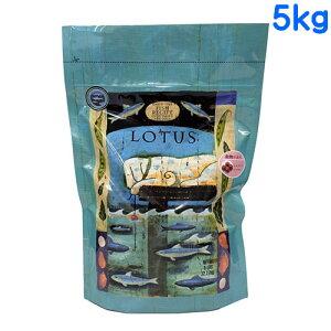 ロータス グレインフリー フィッシュレシピ 小粒 5kg