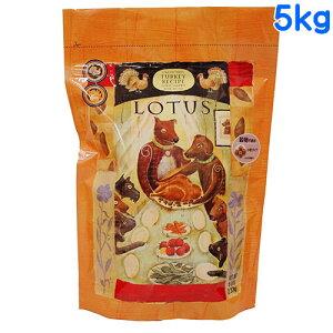 ロータス グレインフリー ターキーレシピ 小粒 5kg