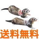 【送料無料】 レインボー ferret プチマリンボーダー M (レッド、ブルー) 【配送方法指定不可】