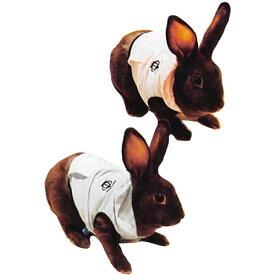 レインボー rabbit ボーダーパーカー M (ピンク、ブルー)
