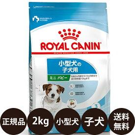 [ 正規品 送料無料 あす楽 ] ロイヤルカナン ミニパピー 2kg [ ROYAL CANIN ロイヤルかなん SHN サイズ ヘルス ニュートリション 犬 犬用 子犬用 MINI ドライフード 小型犬の子犬用 10ヵ月齢まで ミニジュニア ]