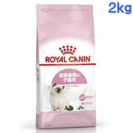 ロイヤルカナン FHN キトン 2kg
