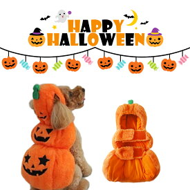 犬服 ブランド かわいい PETFiND 犬 犬の服 秋冬 ハロウィン コスチューム かぼちゃ カボチャ パンプキン 小型犬 仮装 イベント ハロウィーン Halloween マジックテープ