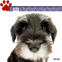 【6】2018年 国内版 THE DOG 壁掛け カレンダー ミニチュアシュナウザー シール付き(2017年9月から18年12月) 犬種別 ザ・ドッグ ザドッグ