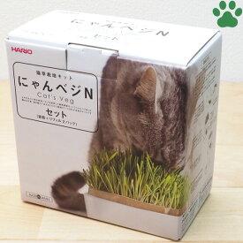 【8】 ハリオ 猫草栽培キット にゃんベジ N 陶器製容器+ネコ草 リフィル2個 セット モダン お洒落 ねこ草