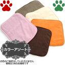 【3】[秋冬] ペットプロ 超小型犬用/猫用 やわらかカラーブランケット Sサイズ 40x32cm 毛布 暖か シンプル