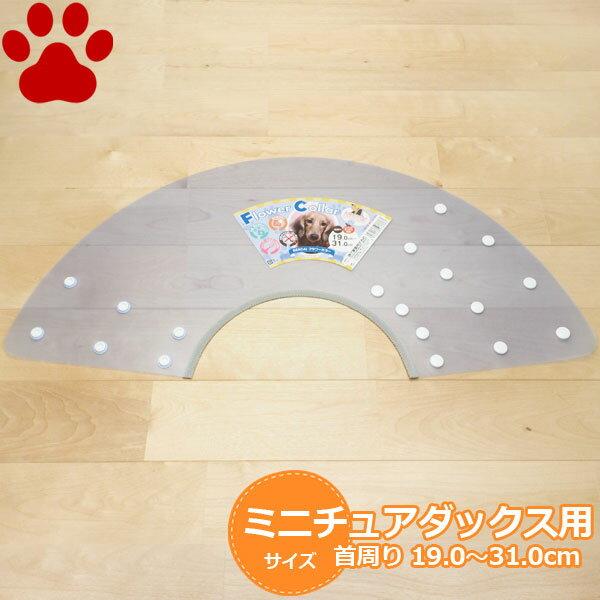 【30】 現代製薬 犬用 フラワーカラー ミニチュアダックス用(首周り 19.0〜31.0cm) パステルブルー エリザベスカラー