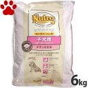 【62】 [正規品]  ナチュラルチョイス 子犬用 チキン&玄米 6kg ニュートロ 超小型犬用/小型犬用/中型犬用 ドッグフード