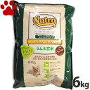 【62】 [正規品]  ナチュラルチョイス プロテイン 超小型犬用/小型犬用 エイジングケア ラム&玄米 6kg ニュー…