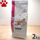 【21】 [正規品] ユーカヌバ 皮膚すこやかに/全犬種用 成犬用 小粒 2kg スペシャルサポート ドッグフード ユカヌバ