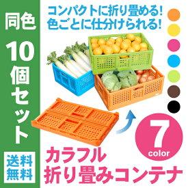 【送料無料】カラフル折り畳みコンテナ 同色10個セット [ 折りコン 収納 収穫 農業 出荷 片付 整理 ]