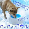 愛犬の熱中症対策に!ペット用の涼しいグッズのオススメを教えてください。