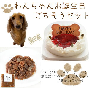 わんちゃんお誕生日ごちそうセット コミフ いちごケーキと 無添加 手作り 犬用ごはん 鹿肉のラグーのセット 送料無料(※一部地域除く)