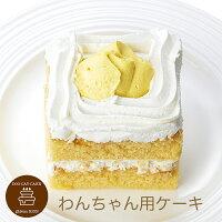 コミフかぼちゃと豆乳のショートケーキペットケーキペット用ケーキ誕生日ケーキバースデーケーキ犬用ワンちゃん用