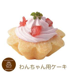 プチタルトいちごのタルトケーキ 誕生日ケーキ バースデーケーキ ワンちゃん用 犬用 ワンちゃん用 (ペットライブラリー or partnerfoods)