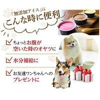 犬のアイス/おやつ