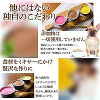 犬用アイスおやつ(無添加・生搾りアイスクリーム5個)オーガニック食材を使用