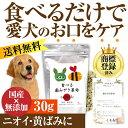 犬 猫 無添加 サプリ(食べる歯磨き革命 30g)【メール便 送料無料】