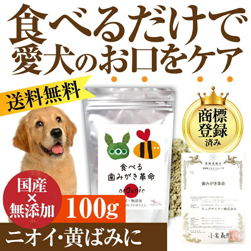 犬・猫 無添加 歯石・口の臭いの為のサプリ(食べる歯磨き革命 100g)【メール便 送料無料】