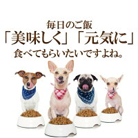 【メール便送料無料】犬猫用ふりかけ(素材勝負のふりかけ25g)国産無添加チーズ・ささみ・納豆・鮭・鹿
