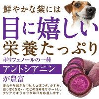 犬涙焼けのケアおやつ(目に良いせんべい5袋)無添加国産【通常便】