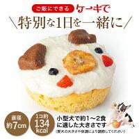 犬用ケーキ・無添加・誕生日ケーキ