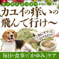 犬のアレルギー用サプリメント