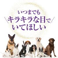 無添加・犬の白内障・目にサプリメント目薬