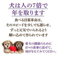 【バージョンアップしました】犬猫用目のケアサプリ(食べる目薬革命30g)無添加ブルーベリー配合粉末【メール便送料無料】