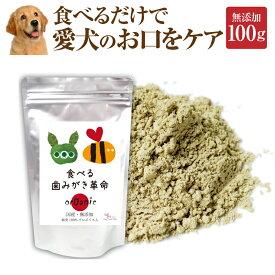 犬・猫用 デンタルケア サプリ(食べる 歯磨き 革命100g)無添加 歯垢・歯石に【送料無料】