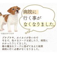 犬猫用年齢・体型・体型・若さに無添加サプリメント(緑の魔法)【送料無料】