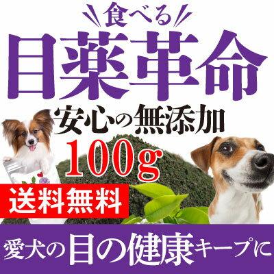 犬 猫用 目 サプリ 食べる 目薬 革命 100g 無添加 ブルーベリー【メール便 送料無料 代金引換不可】