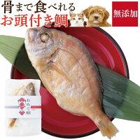 犬・誕生日やお祝いにケーキと一緒に縁起魚金目鯛姿煮(おめで鯛)【通常便】