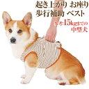 犬 歩行補助 介護用品(ベスト・ハーネス L)高齢犬・シニア犬・老犬の為の胴輪
